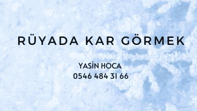Photo of Rüyada Kar Görmek