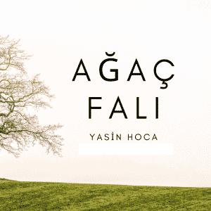 Agac Fali 300x300 - Ağaç Falı