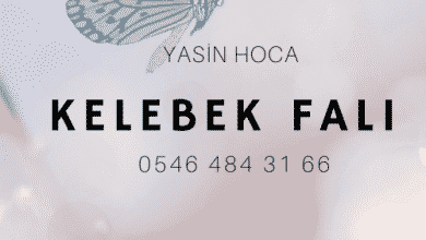 Photo of Kelebek Falı