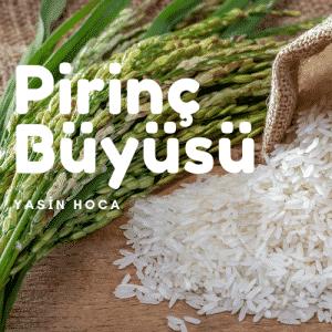 Pirinc Buyusu 300x300 - Pirinç Büyüsü