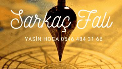 Photo of Sarkaç Falı