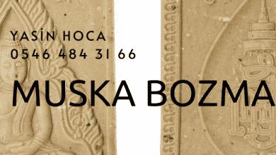 Photo of Muska Bozma