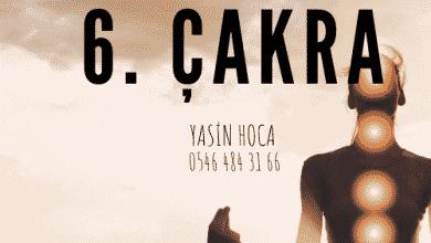 Photo of 6. çakra
