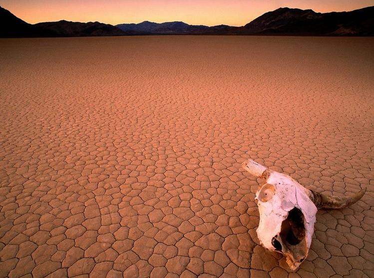 resim 20160802165016 - Ölü Toprağı Büyüsü