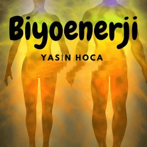 Biyoenerji 300x300 - Biyoenerji