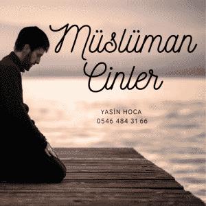 Müslüman Cinler 300x300 - Müslüman Cinler