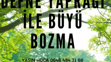 Photo of Defne Yaprağı İle Büyü Bozma